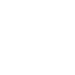 logo flat portfolio white