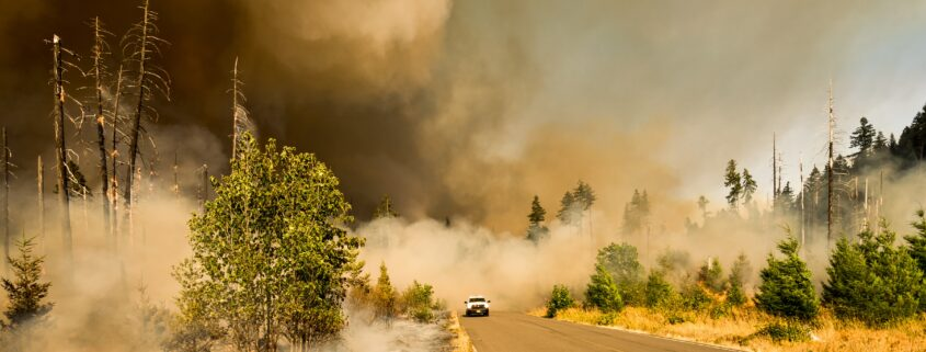Crisis Communications Case Study from California Wildfires and PG&E